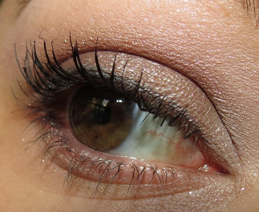 Estée Lauder ENCHANTED BERRIES Pure Color Eyeshadow Palette Swatches, Review & EOTD