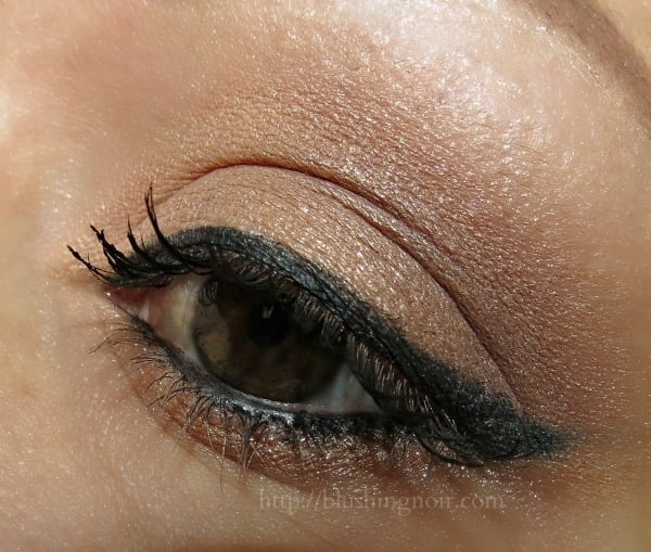 Dior Ambre Nuit 5-Couleurs Eye look