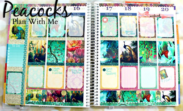 Plan With Me Peacocks Planner