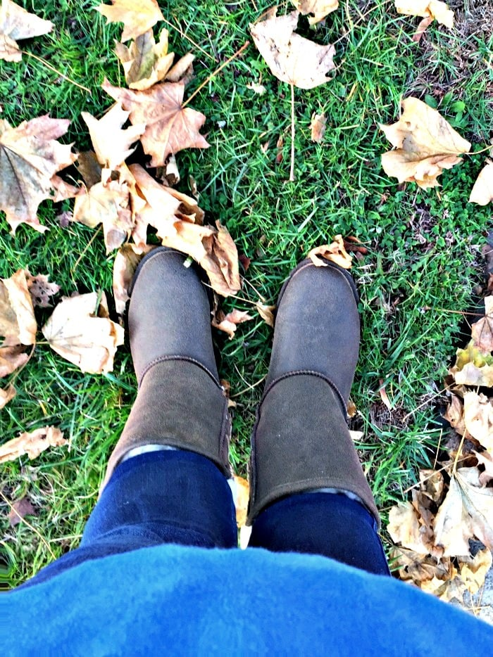 bearpaw boots above